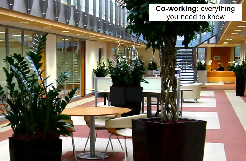 Coworking everythign you need to know blog.jpg